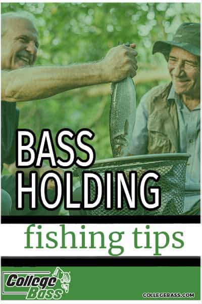 bass holding fishing tips