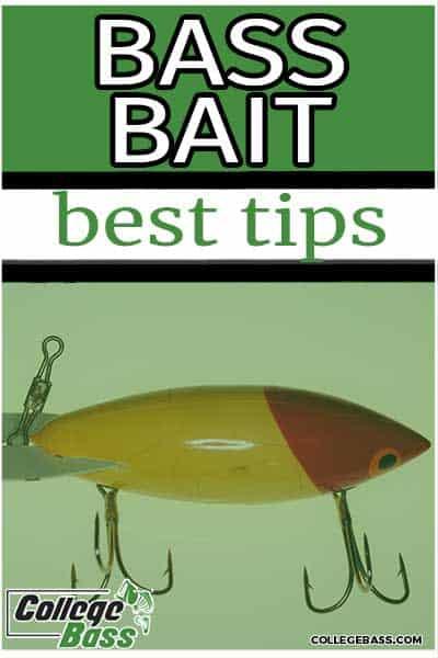 bass bait best tips