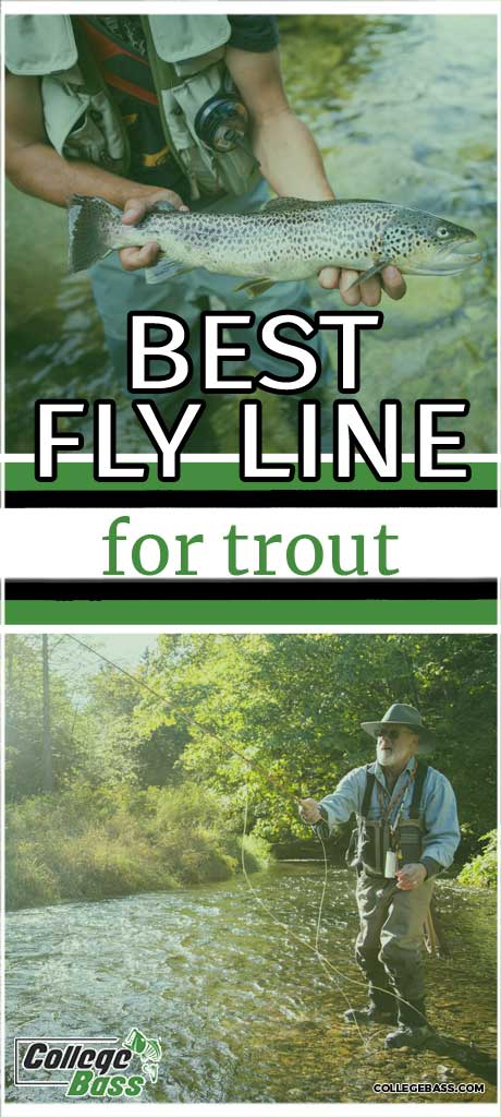 trout fly line