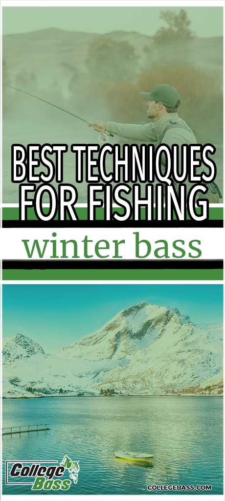 best technique for fishing winter bass