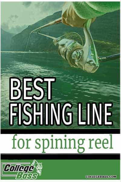 best fishing line for spinning reel