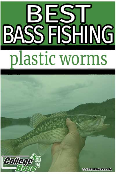 best bass fishing plastic worms