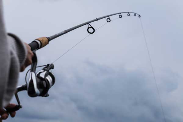 best rod length for bass fishing