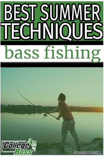 best summer techniques bass fishing