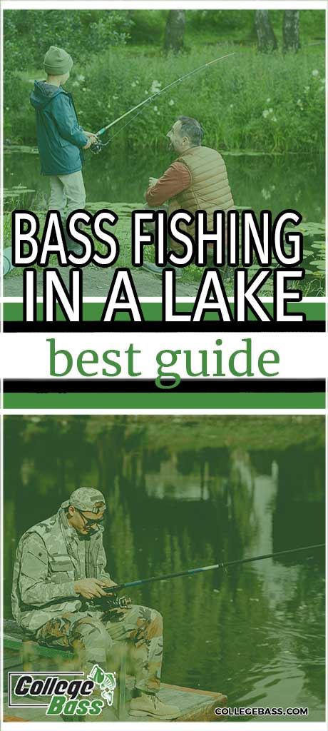 bass fishing in a lake best guide