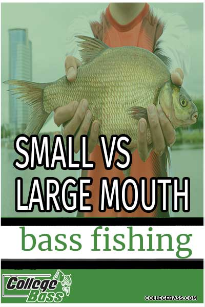 small vs large mouth bass fishing